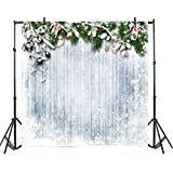 AOFOTO 10X10ft Christmas Wooden Plank Backdrop Snow Covered Green Pine Boughs Red Berry Snowflakes Vinyl Computer Printed Background Newborn Baby Adults Portraits Product Photography Studio Drapes