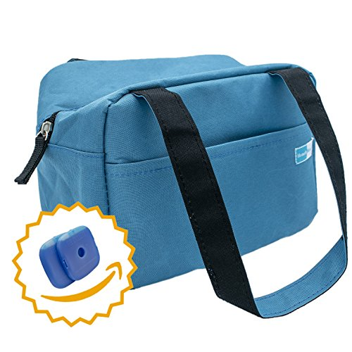 Homely Bliss Insulated Lunch Bag With 2 Free Ice Packs - Sylishand Compact Lunch Box Great for Commuting, Work and School. (Steel (Aluminium Ice)