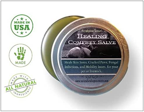 (2 Pack) Healing Comfrey Salve. Handmade in U.S.A. 100% Natural Organic Balm for Wounds, Sore Muscles, Post Surgery Healing, Joint Pain and Arthritis. SOOTHES.Heals.RESTORES