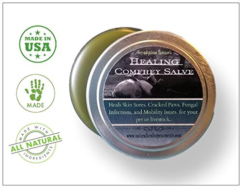 Healing Comfrey Salve. Handmade in U.S.A. 100% Natural and Organic Balm for Skin Disorders, Wounds, Cartilage Regeneration, Post Surgery Healing and Arthritis. SOOTHES.HEALS.RESTORES. (Christophers Dr Formulas)
