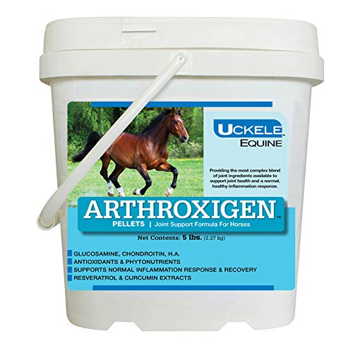 Uckele Arthroxigen Pellets for Horses - Joint Supplement - 5 Pounds by Uckele (Image #1)