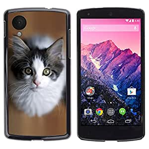 Carcasa Funda Case // V0000901 Cat Kitty Animal Pattern // LG NEXUS 5
