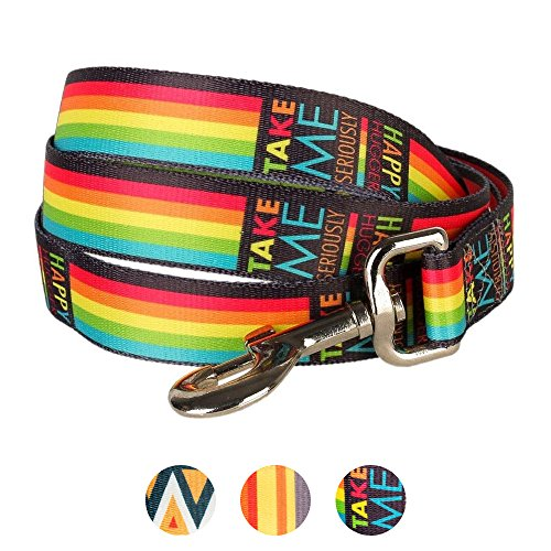Blueberry Pet Durable Rainbow Stripes Designer Dog Leash 5 ft x 3/4