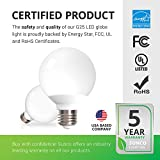 G25 LED Globe 6W 10PK Multicolor