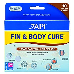 API FIN & BODY CURE Freshwater Fish Powder Medication 10-Count Box 26