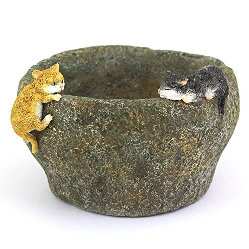 Top Collection 3.75-Inch Miniature Fairy Garden and Terrarium Kittens Playing on Functional Stone Flower Pot for Succulents, Mini
