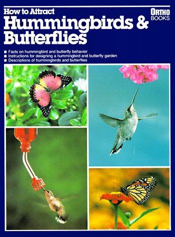 How to Attract Hummingbirds & Butterflies