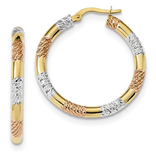 14k Yellow Gold with Rose and White Rhodium D/C 3.0mm Hoop Earrings TF1285 by Lex and Lu