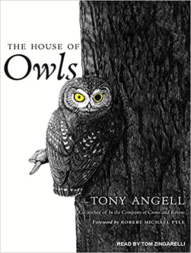 Book cover for The House of Owls by Tony Angell