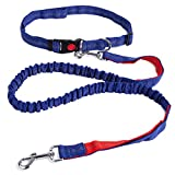 FENGRUIL Hands-Free Running Dog Leash Retractable Shock Absorbing Bungee Pet Leashes with Adjustable Waist Belt for Small Medium Large Dogs (Blue)