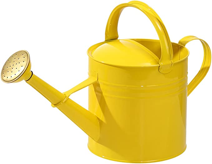 SIENA GARDEN Zinkgießkanne 10l gelb