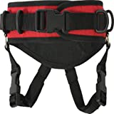 RC Products Kid's Ultimate Ski Harness