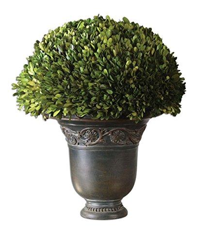 Uttermost Boxwood Globe Preserved (Roman Globe Topiary Urn | Preserved Boxwood Greenery Garden European)