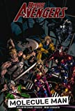 Dark Avengers - Volume 2: Molecule Man