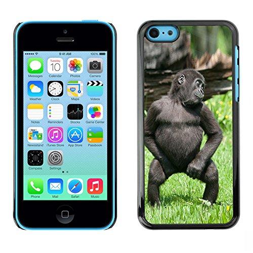 Omega Case PC Polycarbonate Cas Coque Drapeau - Apple iPhone 5C ( Cute Funny Gorilla Baby Monkey )