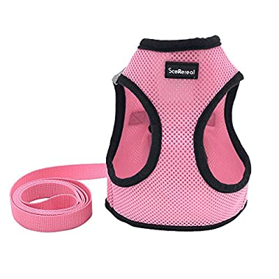 Small Dog Harness Best for Puppy Easy and Comfortable Walking Soft Vest with Leash