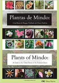 Plantas de Mindo: Una Guía de Bosque Nublado del Chocó