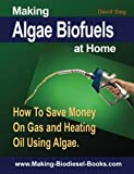 Making Algae Biofuels: How To Save Money on Gas and Heating Oil Using Algae