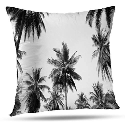 Kutita Palm Trees Decorative Pillow Covers, Coconut Palm Trees Sky Tree Black White Landscape Throw Pillow Decor Bedroom Livingroom Sofa 18X18 inch