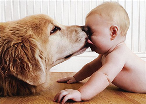 Dog Licking Face - Dog Licking Baby Face Funny Birthday Card
