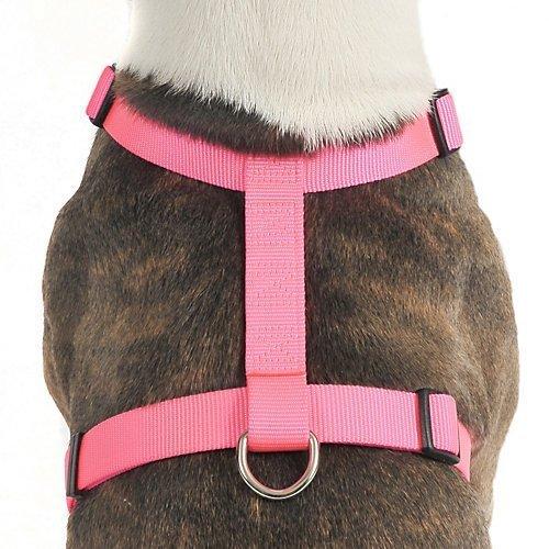 OmniPet Kwik Klip Adjustable Nylon Pet Harness, Medium, Red by Nor Pac Pet Products