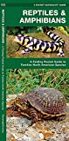 img - for Reptiles & Amphibians: A Folding Pocket Guide to Familiar North American Species (A Pocket Naturalist Guide) book / textbook / text book