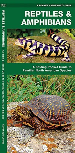 Reptiles & Amphibians: A Folding Pocket Guide to Familiar North American Species (A Pocket Naturalist - Shopping Lakes Centre North