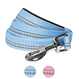 Blueberry Pet 2 Colors 3M Reflective Pastel Color Dog Leash with Soft & Comfortable Handle, 5 ft x 3/4'', Baby Blue, Medium, Leashes for Dogs