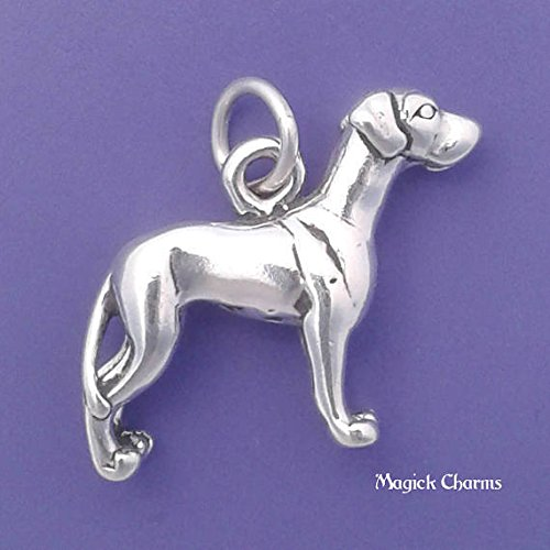 Sterling Silver 3-D GREAT DANE Dog Charm Pendant - lp3526 Jewelry Making Supply Pendant Bracelet DIY Crafting by Wholesale Charms ()