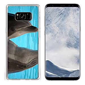 MSD Samsung Galaxy S8 plus Clear case Soft TPU Rubber Silicone Bumper Snap Cases IMAGE ID 19721954 Dolphins dancing in water during show in Loro Parque in Tenerife Spain