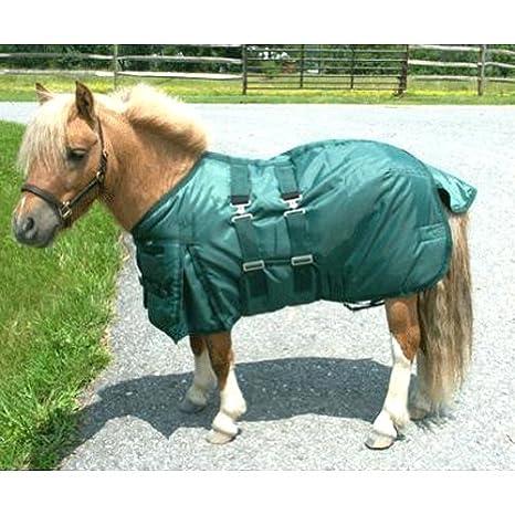 Amazoncom Intrepid International Miniature Horse Turnout Blanket