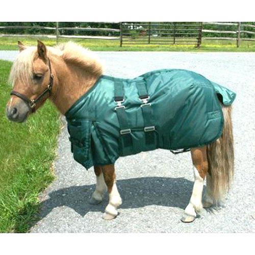 Intrepid International Miniature Horse Turnout Blanket, 43-Inch, Hunter Green
