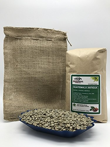 Guatemala Antigua Green Coffee - 5 Pounds - Central American - Guatemala Antigua - Unroasted Green Coffee Beans - Grown in the Antigua Region - Altitude 4700-4900 Feet - Drying/Milling Process Is Fully Washed - Includes Burlap Bag