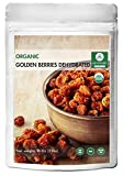 Naturevibe Botanicals USDA Organic Golden Berries Dehydrated (1lb) - Gluten-Free & Non-GMO (16 ounces)