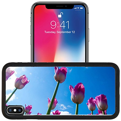Luxlady Apple iPhone x iPhone 10 Aluminum Backplate Bumper Snap Case IMAGE ID: 40731620 Tulips Bulbous seeds lily flowers with large cup shaped Beautiful bouquet of tulips colo