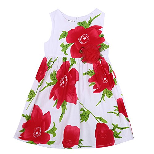 Gogolan Little Girl Summer Sleeveless Floral Printed Party Dress Red 2-3T (Dress Sleeveless Mesh Printed)