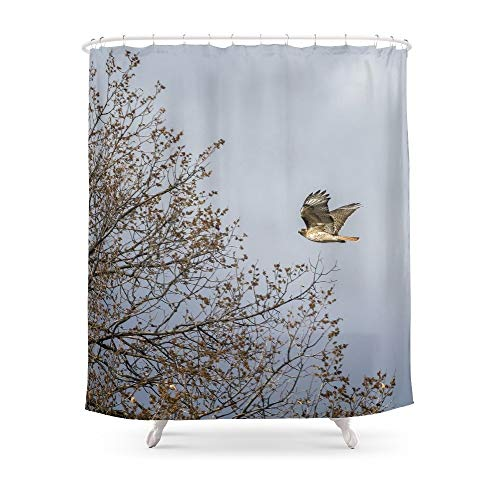 fengyijiating Red Tailed Hawk in Flight Shower Curtain 60