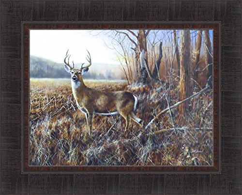 Bluff Country Buck by Jim Hansel 17x21 Whitetail Deer Framed Art Print Wall Décor Picture