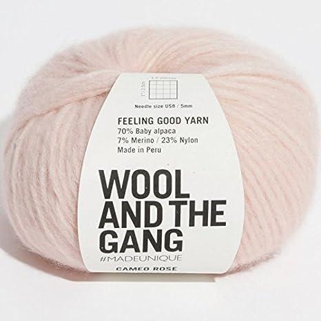 Filati di lana e la banda Feeling Good Cameo Rose: Amazon.it ...