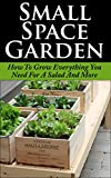 container garden ideas Small Space Garden: How To Grow Everything You Need For A Salad And More (Small Space Garden, Small Space Gardening, Small Space Garden Ideas, Square Foot ... Square Foot Gardening, Square Foot Gard)