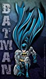 Best Licenses Products Man Stickers - Licenses Products DC Comics Batman Kneeling Sticker Review