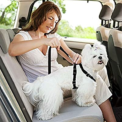 Dog Seatbelt Harness with Adjustable Car Seat Belt Clip + Nylon Webbing & Metal Snap-links - Secure Your Pet While Driving - Made from Parachute Grade Material - Strong, Durable & Padded for Comfort - Several Sizes to Fit Small/Big Breeds - Free Ebook Dog
