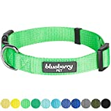"""Blueberry Pet 32 Colors Classic Dog Collar, Neon Green, Small, Neck 12""""-16"""", Nylon Collars for Dogs"""