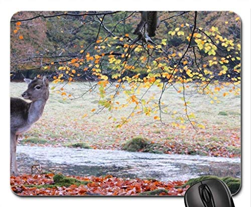 Deer Mouse Pad, Mousepad (Deer Mouse ()