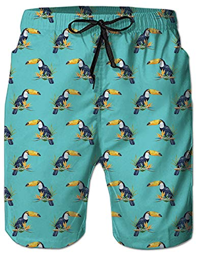 Mens 3D Printing Funny Toucan Bird Pattern 80s Retro Summer Holiday Retro Beach Shorts Hwaiian Vintage Bathing Suit Tropical Beach Casual Style Board Shorts with Elastic -