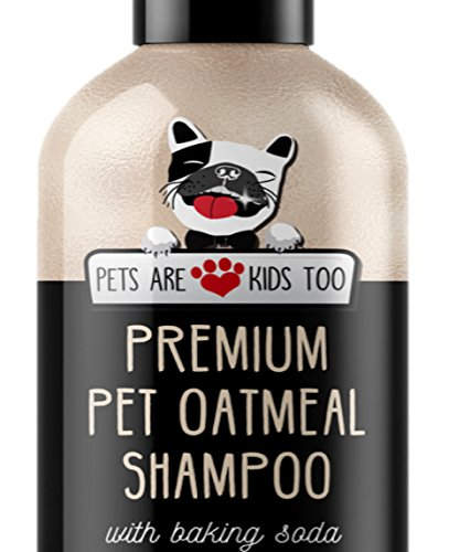 Top 10 oatmeal shampoo and conditioner for kids for 2020