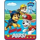 Paw Patrol Great Job Pups Soft & Cuddly Silky Soft Throw 40 x 50 102cm x 127cm