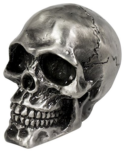 Highway Hawk 02-086M Cracked Skull Ornament, Old Silver Motolux Specialities BV MD20-BRK