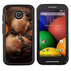Los cachorros de dormir de Brown Chesapeake Perro- Metal de aluminio y de plástico duro Caja del teléfono - Negro - Motorola Moto E / XT1021 / XT1022