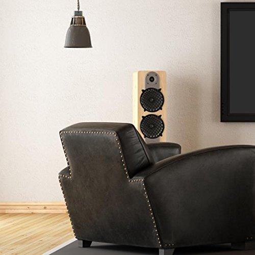 Universal Car//Vehicle Speaker Protectors Sound Around Pair Pyramid GW5BK 5 Speaker Grill Covers